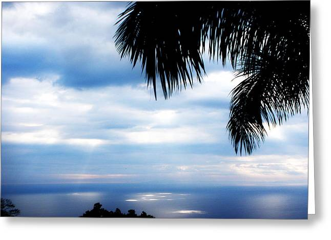 Sea Sky And Palm Tree Greeting Card by Rosvin Des Bouillons
