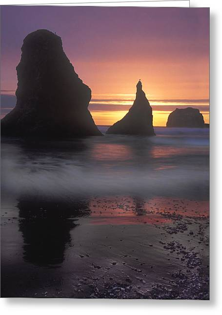 Sea Stacks Off The Oregon Coast Greeting Card by Dave Mills