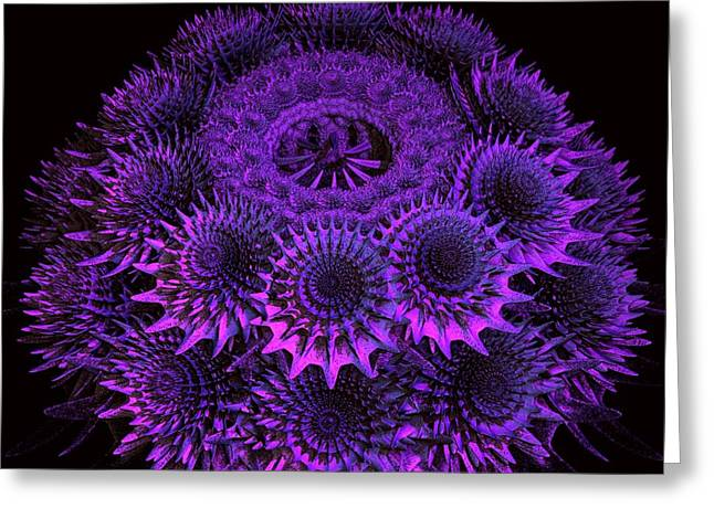 Sea Urchin Greeting Card by Julie Grace