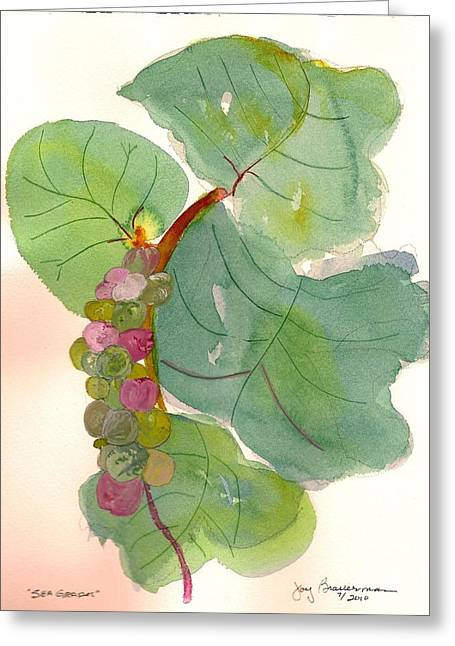 Greeting Card featuring the painting Seagrapes by Joy Braverman