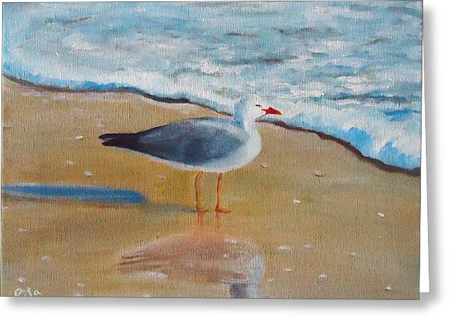 Seagull By The Shore Greeting Card