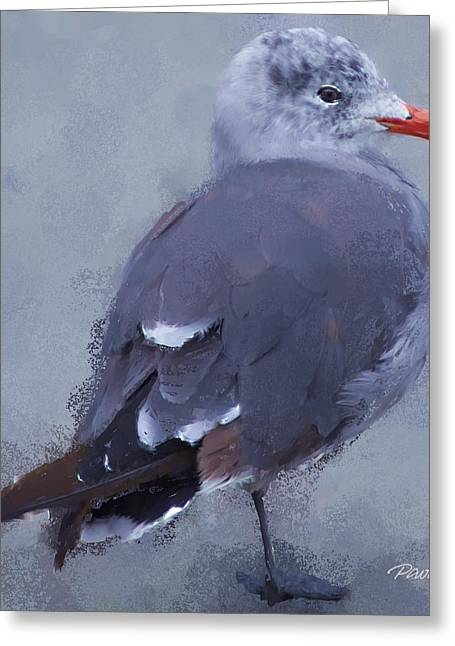 Seagull Portrait I Greeting Card