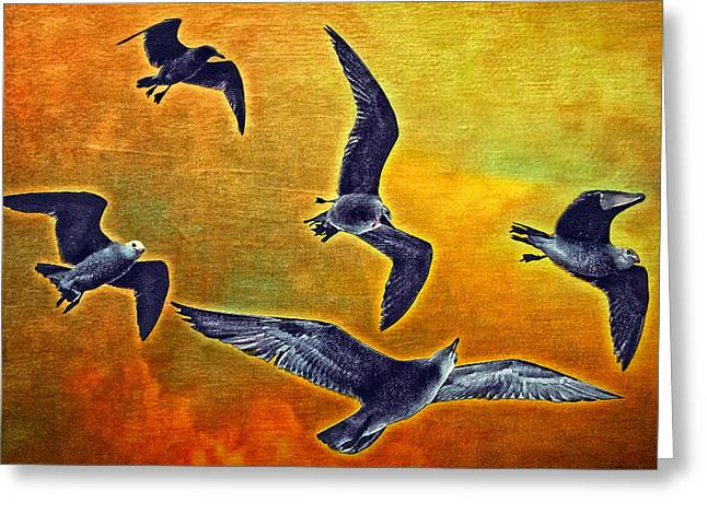 Seagulls In Flight Greeting Card by Donna Pagakis