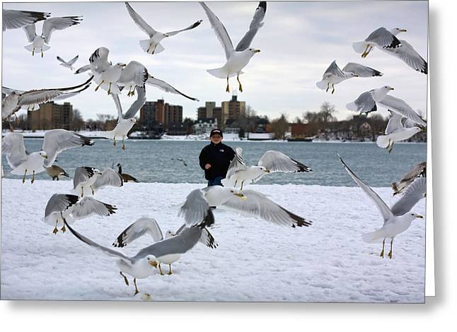 Seagulls In Flight Greeting Card by Gordon Dean II