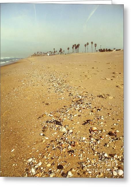 Seashells Washed Ashore Greeting Card by Susan Gary