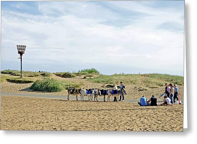 Seaside Donkeys Waiting For The Children Greeting Card
