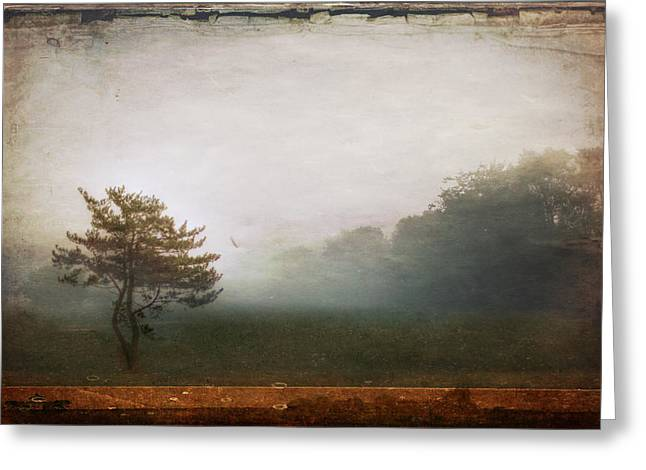 Season Of Mists Greeting Card by Evelina Kremsdorf