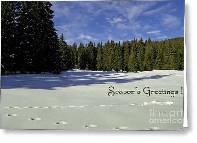 Season's Greetings Austria Europe Greeting Card by Sabine Jacobs