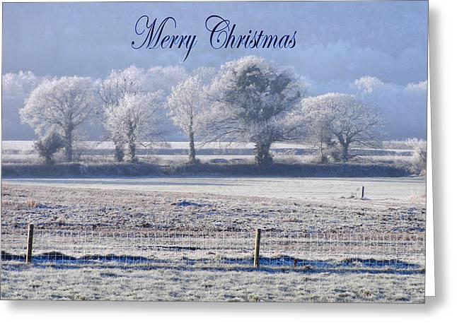 Seasons Greetings Greeting Card by Debra Collins