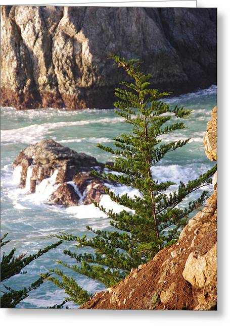 Secluded Big Sur Cove 2 Greeting Card by Jeff Lowe