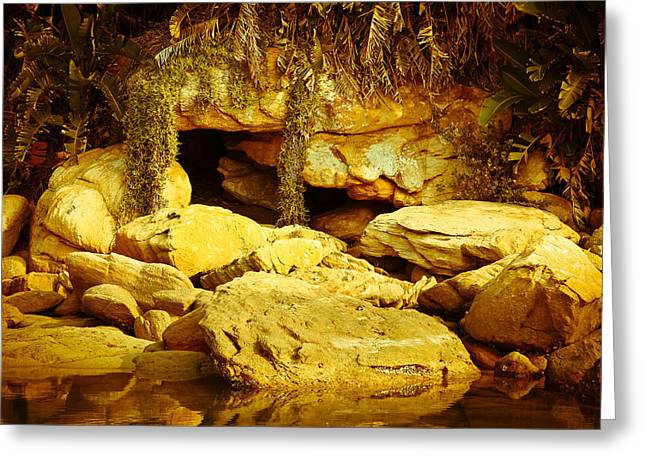 Secret Cave Greeting Card by Miguel Capelo
