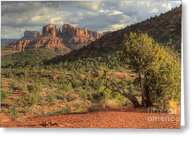Sedona Red Rock Viewpoint Greeting Card by Sandra Bronstein
