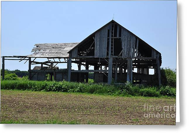 See-through Barn Greeting Card by Ginger Harris