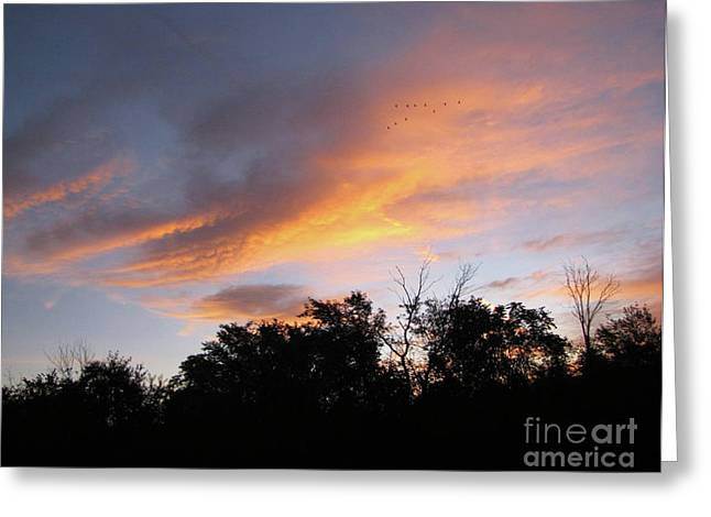 September Sunrise 1 Greeting Card by Cedric Hampton