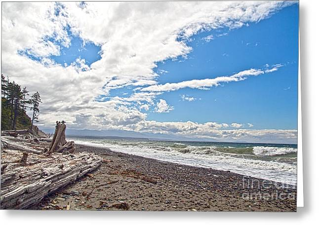 Sequim Beach Greeting Card by Molly Heng