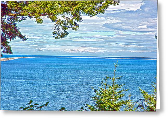 Sequim's Dungeness Spit Greeting Card by Molly Heng