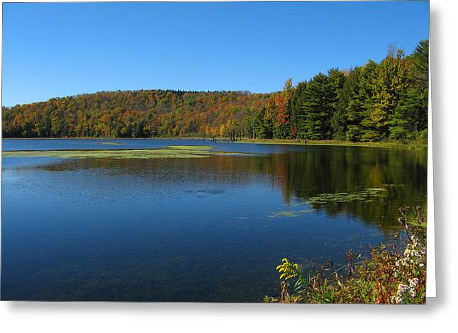 Serene Lake In Fall Greeting Card by Leontine Vandermeer