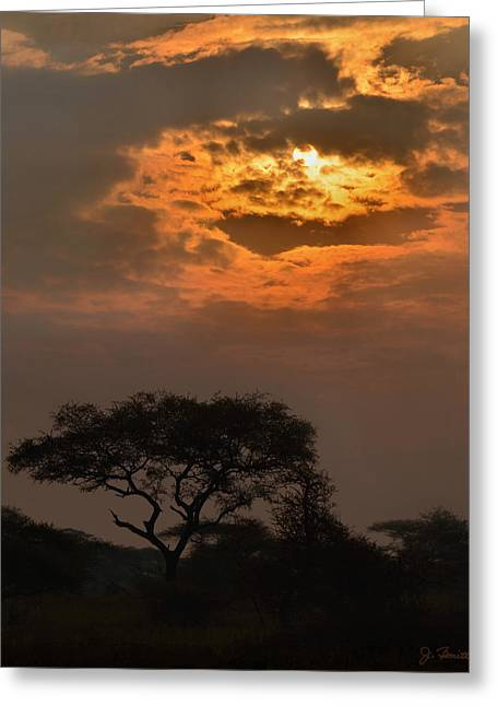 Serengeti Sun No. 1 Greeting Card by Joe Bonita