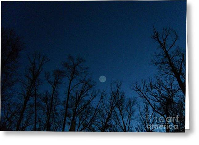Serenity Blue Greeting Card by Doug Kean