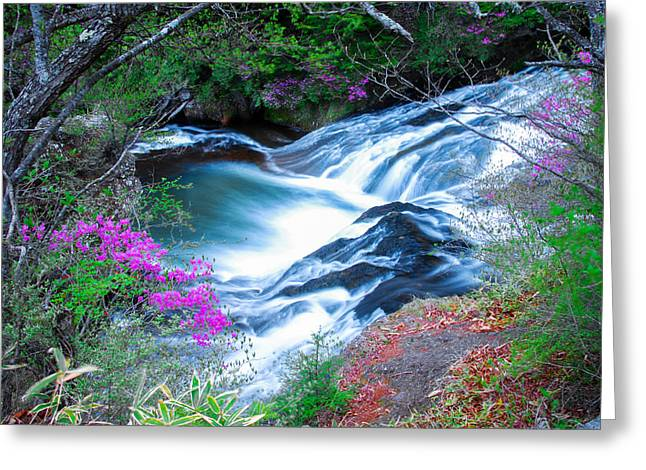Serenity Flowing Greeting Card