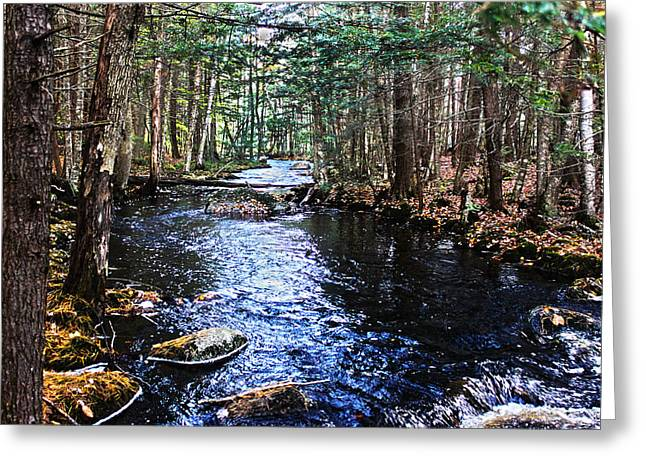 Serenity Greeting Card by Tanya Chesnell