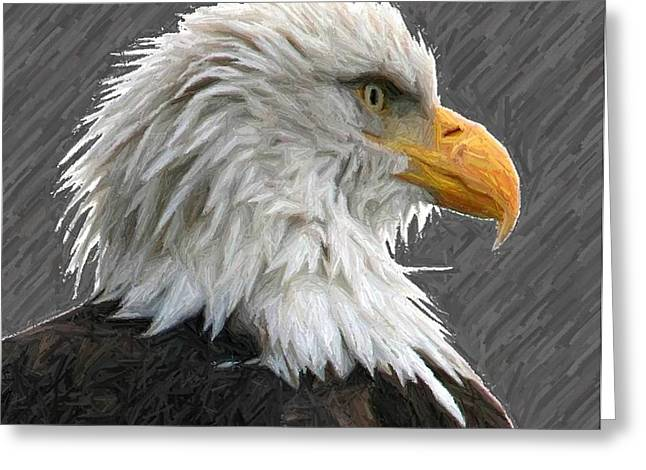 Serious Eagle Greeting Card by Carrie OBrien Sibley