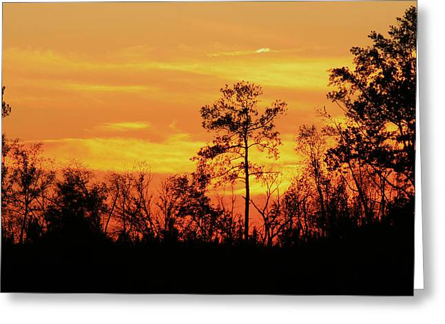 Greeting Card featuring the photograph Setting Sun by Karen Harrison