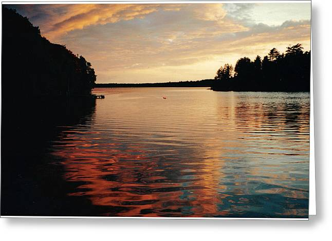 Setting Sun Greeting Card by Patricia Hiltz