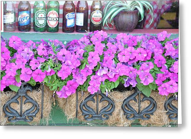 Seven Bottles Of Beer On The Wall Greeting Card by Jan Amiss Photography