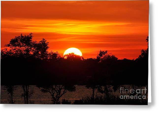 Shades Of Orange Greeting Card by Suzanne Handel