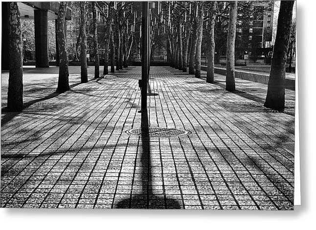Shadows On The Ground Greeting Card