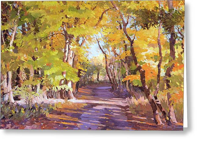 Shady Path At Fall In The Woods Greeting Card