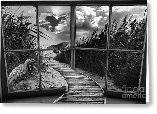 Sharing In The View Greeting Card by Scott Allison