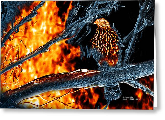 Sharp Shinned Hawk 0112 Fire And Ice Art Greeting Card