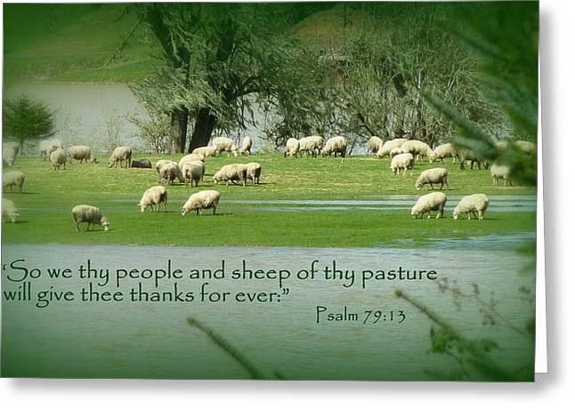 Sheep Grazing Scripture Art Greeting Card by Cindy Wright