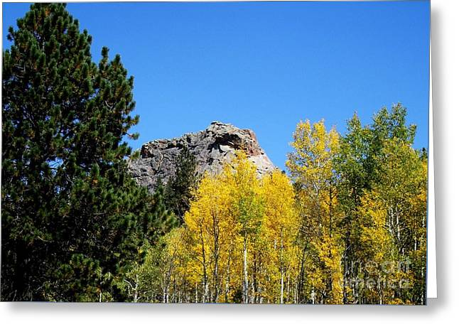 Sheep Nose Mountain In The Autumn Greeting Card by Donna Parlow