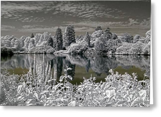Sheffield Park Gardens Lake - Infrared Photography Greeting Card by Steven Cragg