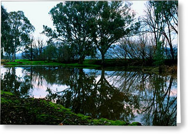 Shelley Creek Greeting Card