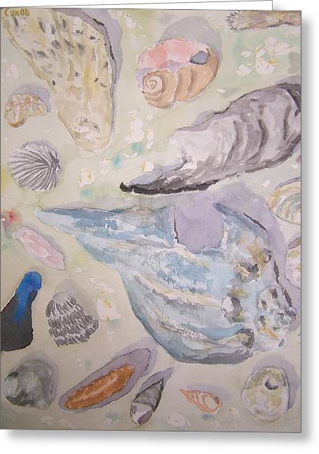 Shells Greeting Card by James Cox