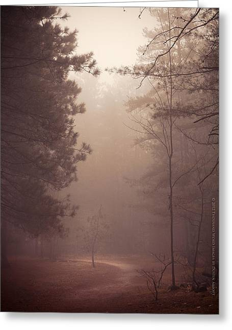Shine Down On Me Greeting Card by Dustin Abbott