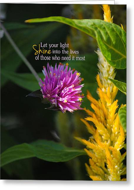Shine Encouraging Pink And Yellow Flower Photograph Greeting Card by Jai Johnson