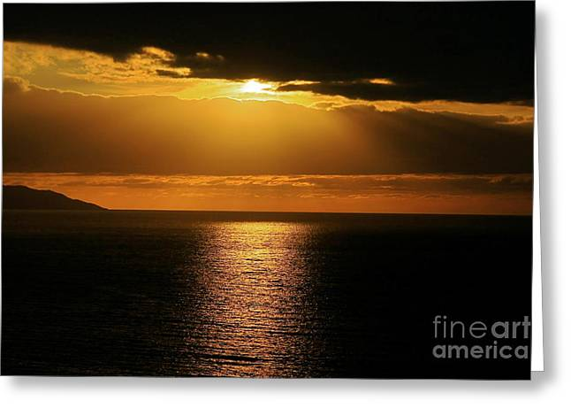 Greeting Card featuring the photograph Shining Gold by Nicola Fiscarelli