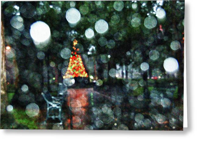 Shiny Tree In Bienville Square Greeting Card