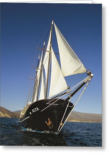 Ship Sailing Through The Galapagos Greeting Card by Steve Winter