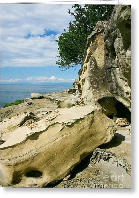 Shoreline Sculpture Greeting Card by Frank Townsley