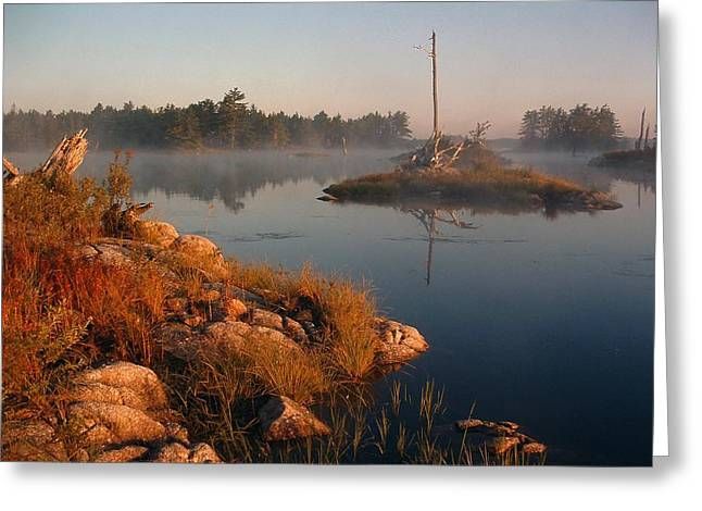 Shorelines Black  River Lake Greeting Card