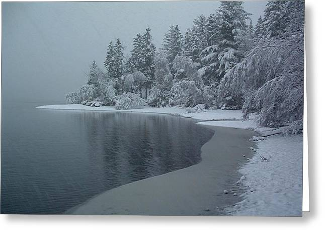 Shorelines Lumsden Pond Reduced Visibility Greeting Card