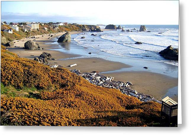 Greeting Card featuring the photograph Shores Of Oregon by Will Borden