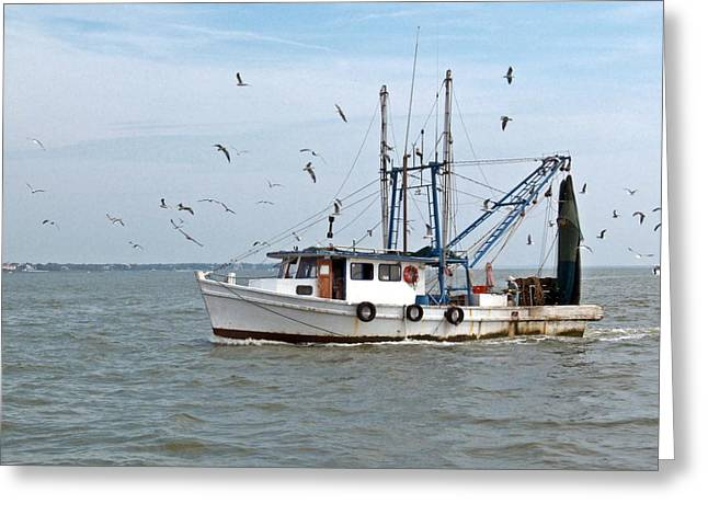 Shrimp Boat And Gulls Greeting Card