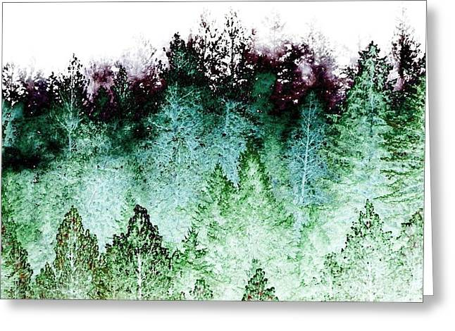 Shrouded In Fog Greeting Card by Will Borden